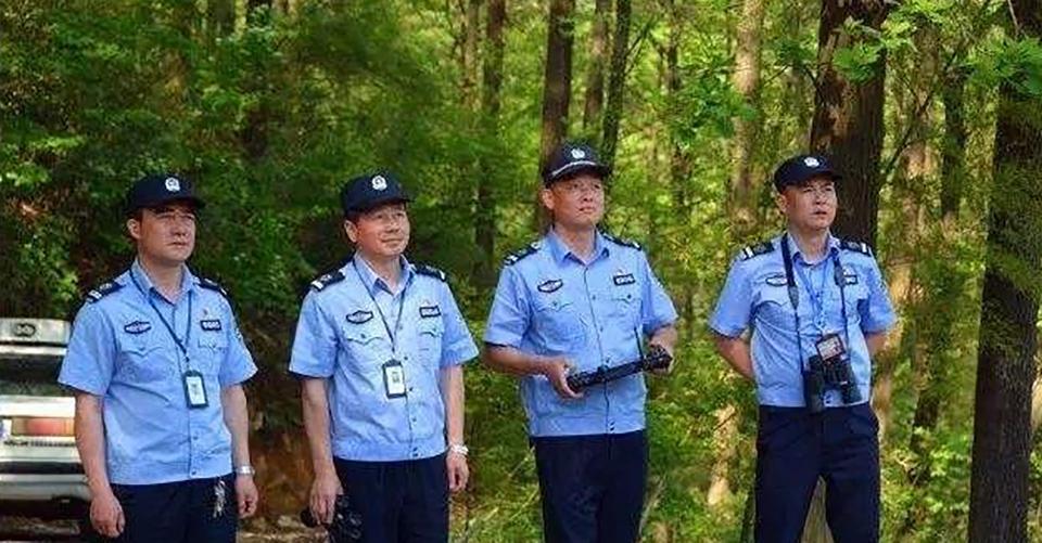 森林公安执法