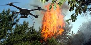 森林防火防灾